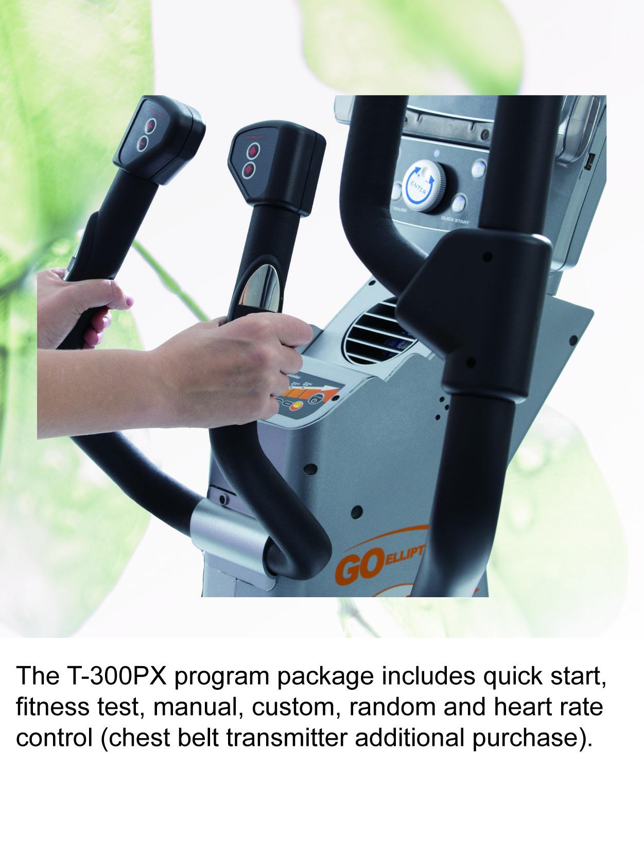 T 300pxen 07(2021)